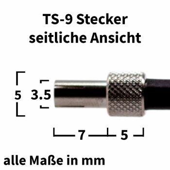 TS-9 Stecker - Detallierte Ansicht